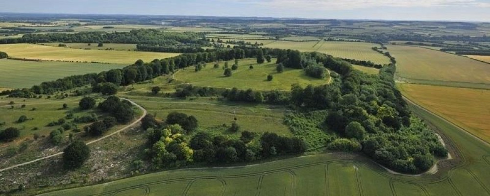 A30 dog-friendly pub and dog walk near Andover, Hampshire - hill fort on a dog walk Hampshire.jpg