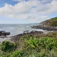 Portwrinkle Beach - dog-friendly, Cornwall - 20191015_123055.jpg