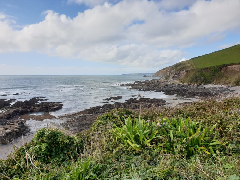 Portwrinkle Beach - dog-friendly, Cornwall - 20191015_123055.jpg