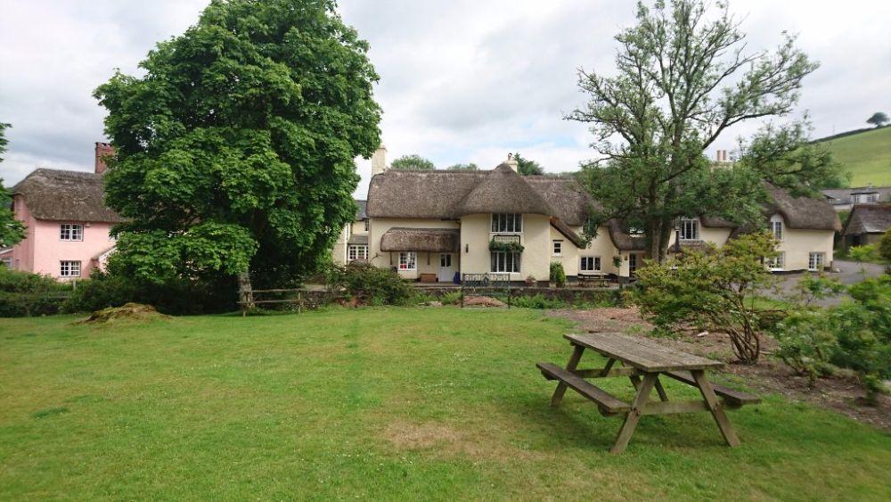 A396 dog-friendly pub and dog walk on Exmoor, Somerset - Somerset dog-friendly pub and dog walk