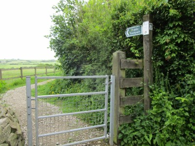 A377 dog-friendly pub and country dog walk, Devon - Driving with Dogs
