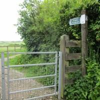 A377 dog-friendly pub and country dog walk, Devon - Devon dog walk and dog-friendly pub.JPG