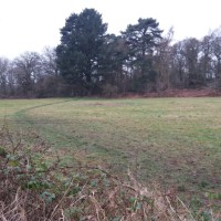 Just off the A50, beautiful pool, meadow, and option for long dog walks., Leicestershire - 218239C7-55AC-4AA6-BDA8-A2B4B48588D0.jpeg
