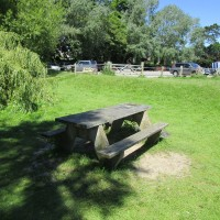 A34 nr Oxford dog walk and dog-friendly pub, Oxfordshire - dog walk in Oxfordshire