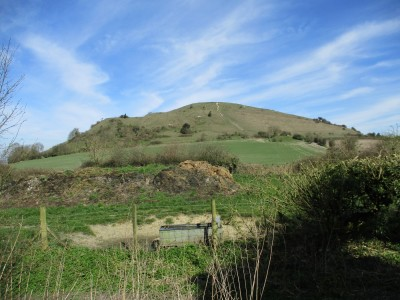 Ancient fort and dog walk near Warminster, Wiltshire - Driving with Dogs