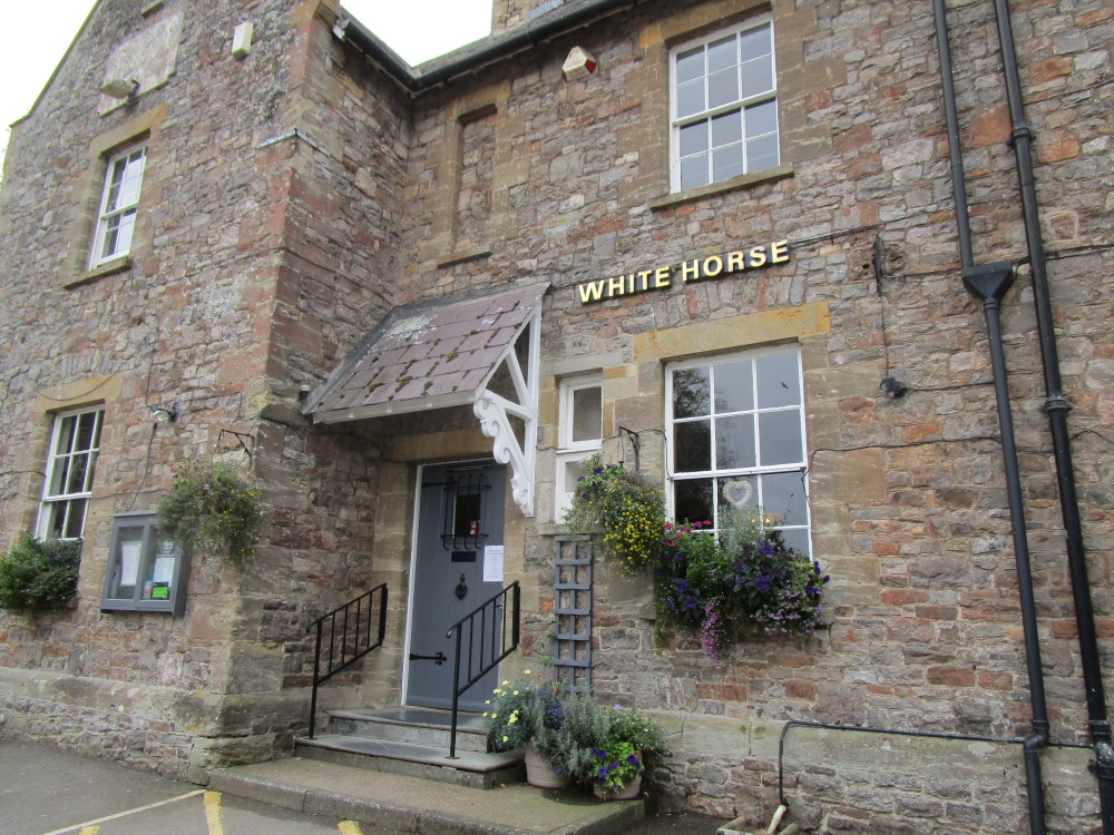 A38 River Tone dog walk and dog-friendly pub, Somerset - Dog walks in Somerset