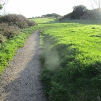 Coast path dog walk with pub, Dorset - IMG_6564.JPG