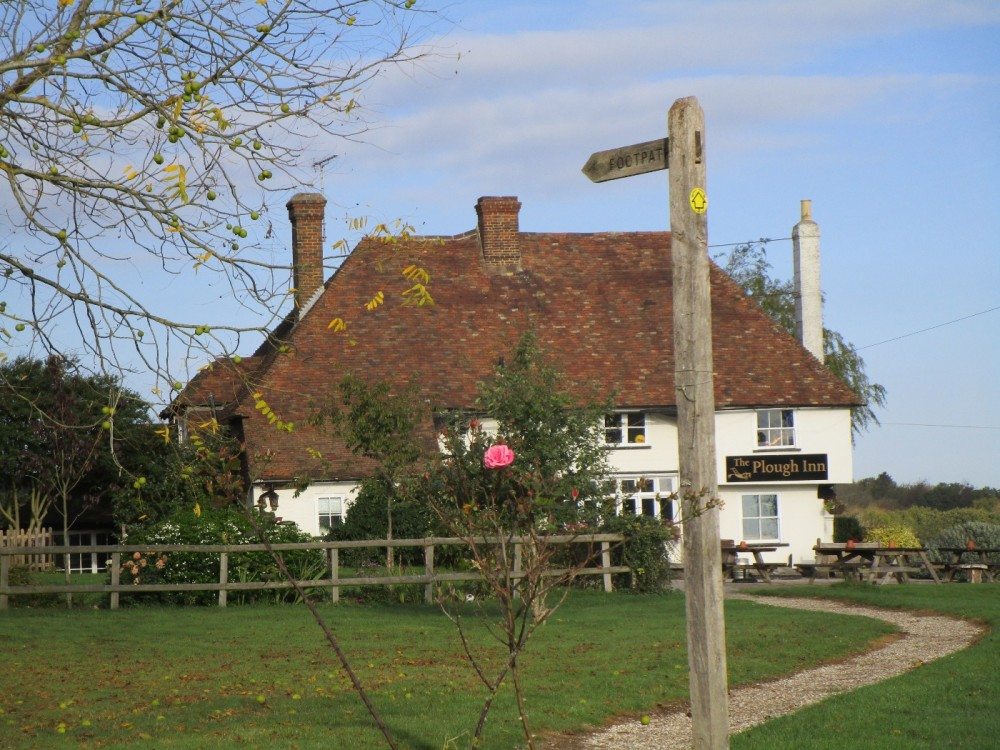 Country dog walk and dog-friendly pub, Kent - Dog walks in Kent