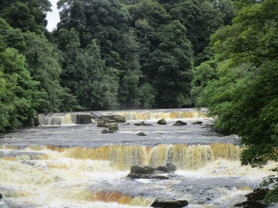 Spectacular Falls dog walk and dog-friendly inn, Yorkshire - Driving with Dogs