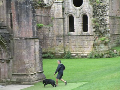 Abbey ruins dog walk and cafe, Yorkshire - Driving with Dogs