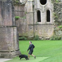 Abbey ruins dog walk and cafe, Yorkshire - Dog walk in Yorkshire