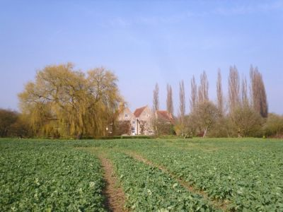 Dog-friendly inn and dog walk near Oxford, Oxfordshire - Driving with Dogs