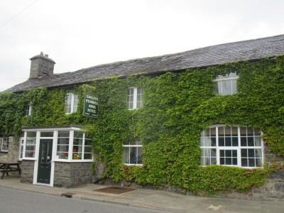 A470 dog-friendly pub on the Glendwr Way, Wales - Driving with Dogs