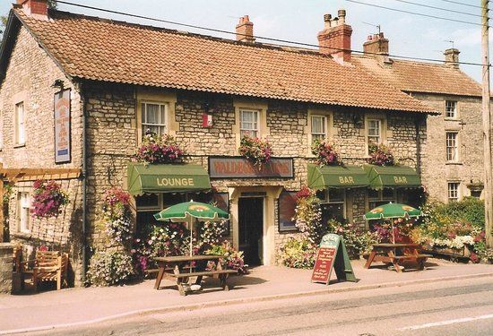 A39 dog-friendly pub and dog walk near the Mendips, Somerset - dog-friendly somerset.jpg