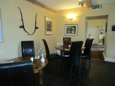 Dog-friendly hotel and dining near Machynlleth, Wales - Driving with Dogs