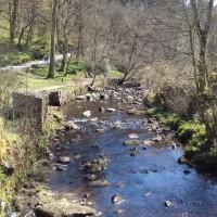 Hardcastle Crags dog walks, West Yorkshire - 20190411_135059.jpg