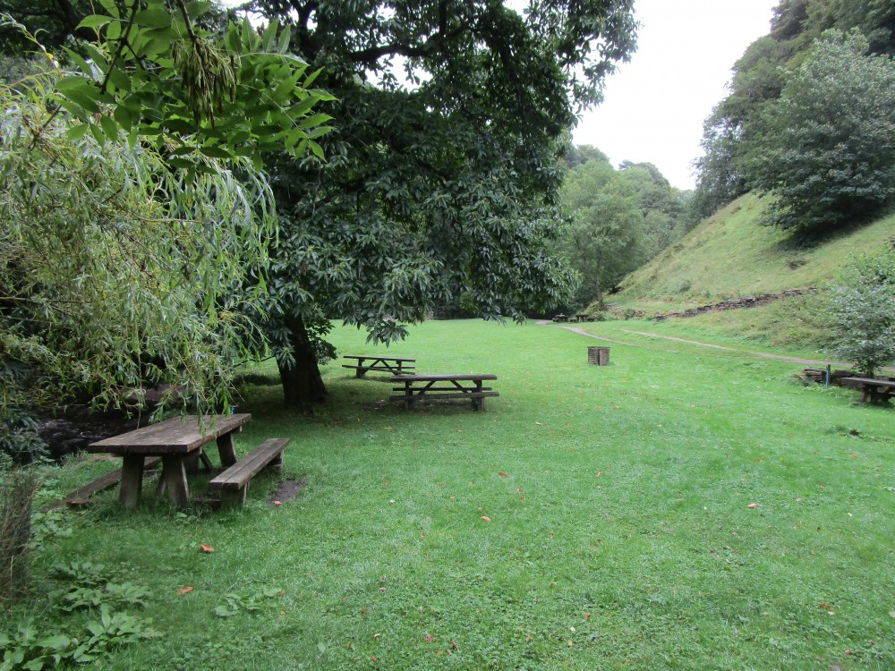 Feel the Force dog walk and dog-friendly pub, North Yorkshire - Yorkshire dog-friendly pub and dog walk