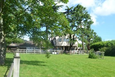 M25 Jct 5 dog-friendly pub with dog walk, Essex - Driving with Dogs