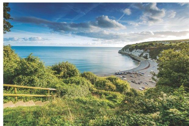Coast path and a dog-friendly beach, Devon - Devon dog-friendly beaches and dog walks.jpg