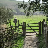 Seven Sisters Country Park dog walks, East Sussex - Sussex dog-friendly pub and dog walk.JPG
