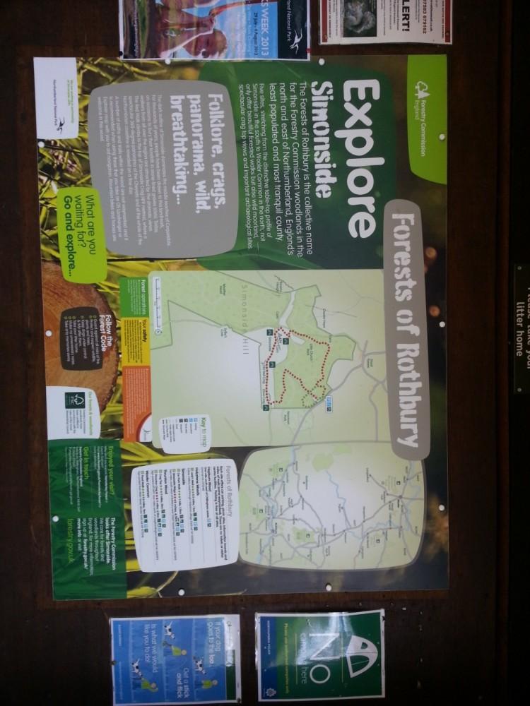 Simonside Hills dog walk, Northumberland - 20130806_130604.jpg