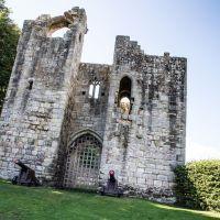 Castle ruins, dog-friendly pub and riverside walks, Northumberland - Castle and dog walks Northumberland.jpg