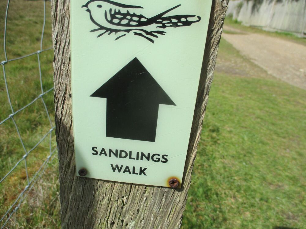 Walberswick section of the Sandlings Walk, Suffolk - Sandlings dog walk in Suffolk