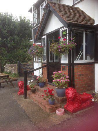 Rural dog walk and dog-friendly pub near Henley, Oxfordshire - Dog walks from dog-friendly pubs Oxfordshire.jpg