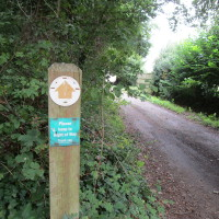 A49 dog walk and pub just north of Leominster, Herefordshire - Dog walks in Herefordshire