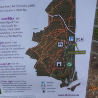 A34 Country Park dog walk near Newbury, Berkshire - Berkshire dog walk