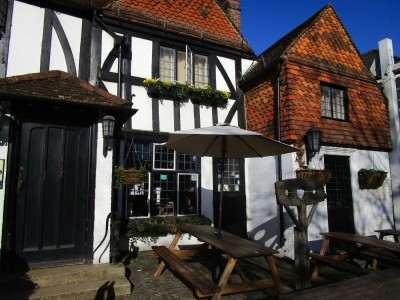 A25 dog walk and dog-friendly pub, Surrey - Driving with Dogs