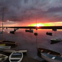 A149 bracing walk by the marshes and a dog-friendly pub, Norfolk - Dog-friendly pub and dog walk near Wells Next The Sea
