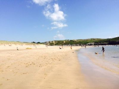 Dog-friendly beach and dog walk near Haverfordwest, Wales - Driving with Dogs
