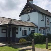 A31 dog-friendly pub, Dorset - Dorset dog-friendly pub and dog walk