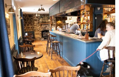 Torpoint dog-friendly pub, Cornwall - Driving with Dogs