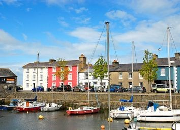 Dog-friendly pub in Aberaeron, Wales - Aberaeron dog-friendly pub.jpg