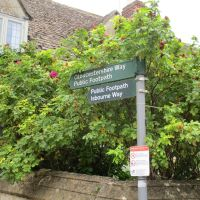 Winchcombe dog-friendly inn with B&B and dog walks, Gloucestershire - WInchcombe dog-friendly dog walk and B&B.JPG