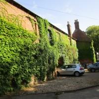 Dog-friendly inn and dog walks near Market Harboro, Leicestershire - Dog walk and dog-friendly pub in Leicestershire