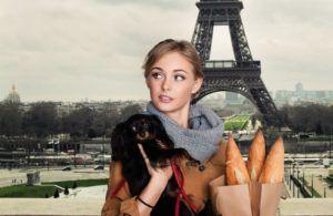 Spaniel-Eiffel-Paris.jpg