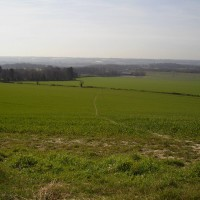 Thurnham dog-friendly inn with dog walks, Kent - Dog walks in Kent