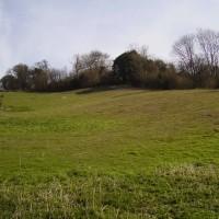 Thurnham dog-friendly inn with dog walks, Kent - Dog walks in Kent