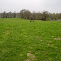 M11 Junction 10 dog-friendly pub and dog walk, Cambridgeshire - Dog walks in Hertfordshire