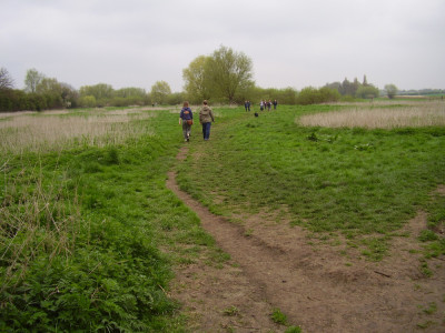 M11 Junction 12 dog walk and dog-friendly pub, Cambridgeshire - Driving with Dogs