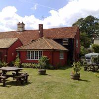Village pub and dog walk near Saffron Walden, Essex - Essex dog-friendly pub and dog walk
