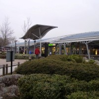 The Hidden dog walk at South Mimms Services, Hertfordshire - Dog walks in Hertfordshire