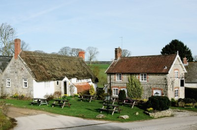 A30 Dog walk and dog-friendly pub, Wiltshire - Driving with Dogs