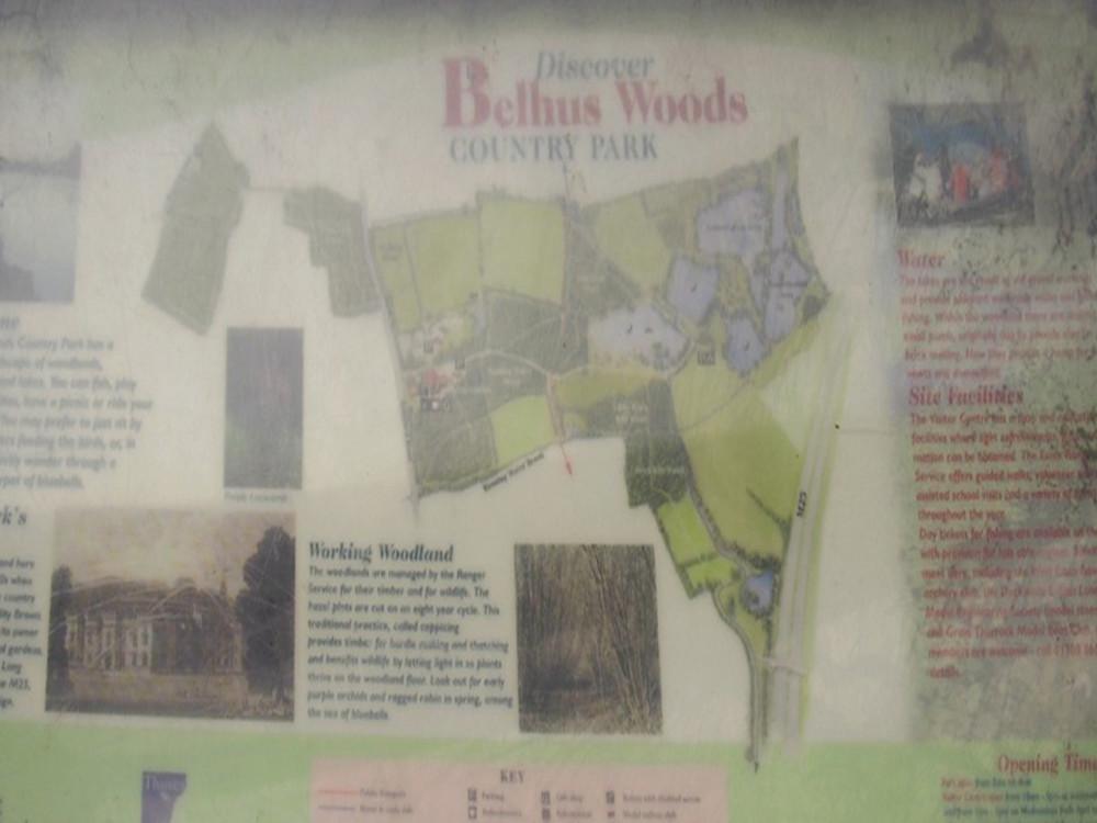 M25 Junction 31 dog walk near South Ockendon, Essex - Dog walks in Essex