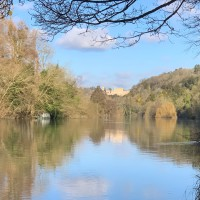 Woodlands, River and Garden dog walks at Cliveden, Buckinghamshire - IMG_0789.jpg