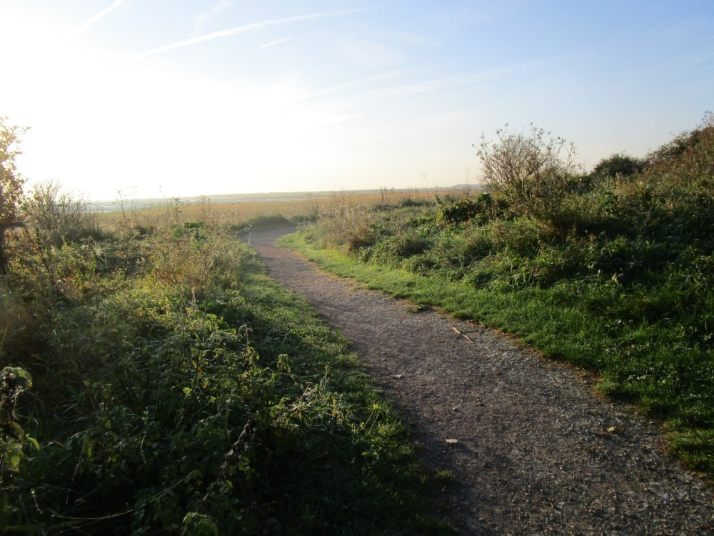 Saxon Shore Way dog walks, Kent - Dog walks in Kent
