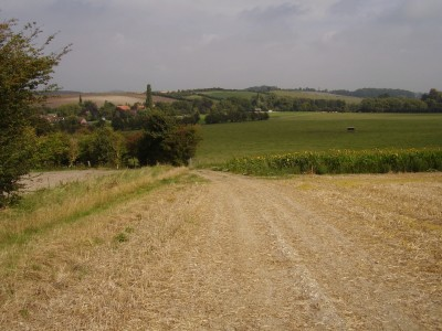 Cuxham dog-friendly pub and dog walk, Oxfordshire - Driving with Dogs